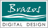 Brazos Digital Design